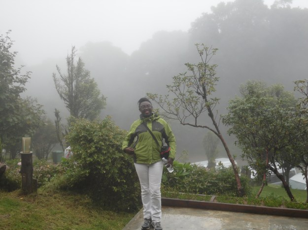 Happy within a mist of grey!