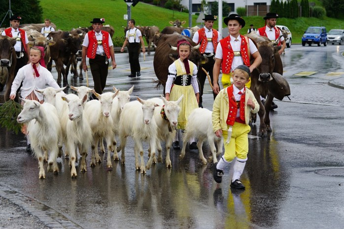 The locals of Switzerland. And their goats!
