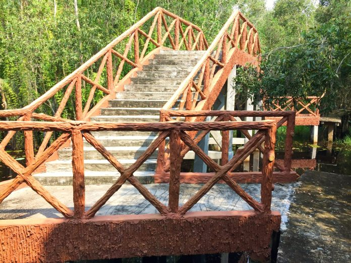 A bridge in Melaleuca forest in Tan Lap floating village, Long An