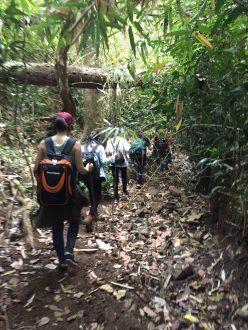 Trekking at Bu Gia Map national park, Vietnam