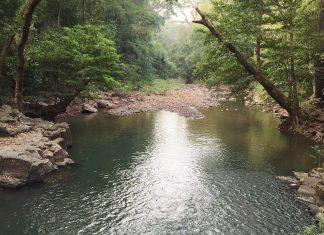 A stream inside Bu Gia Map National Park