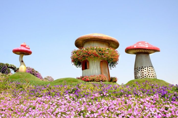 Dubai Miracle Garden, one of the top attractions in Dubai