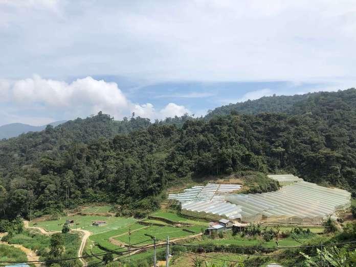 glass houses at cameron highlands, malaysia