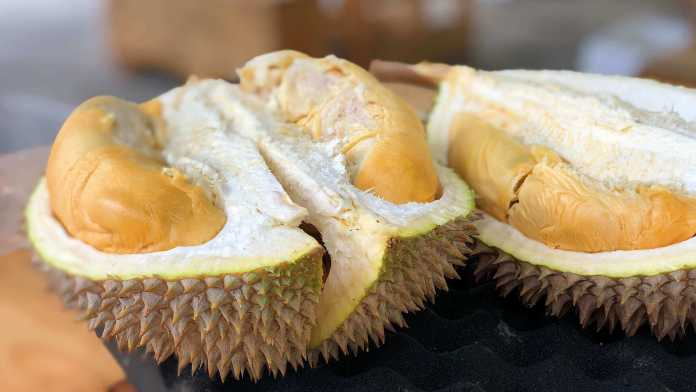 Durian is among the world's most smelly foods