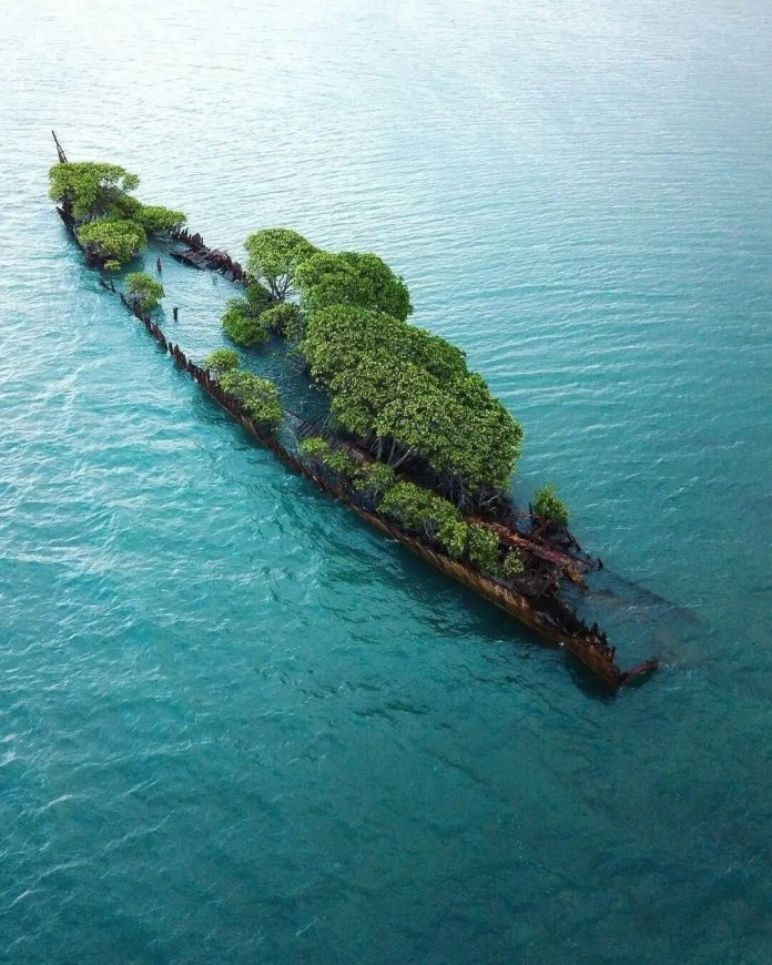 abandoned ss city of adelaide ship wreck at magnetic island, australia