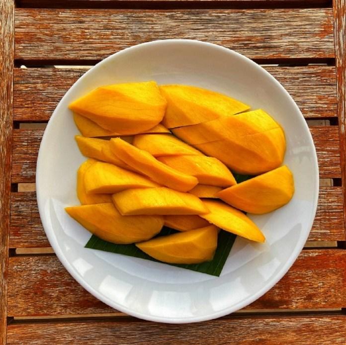 hoa loc mango of vietnam fruit