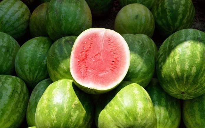 best watermelon in Vietnam fruit