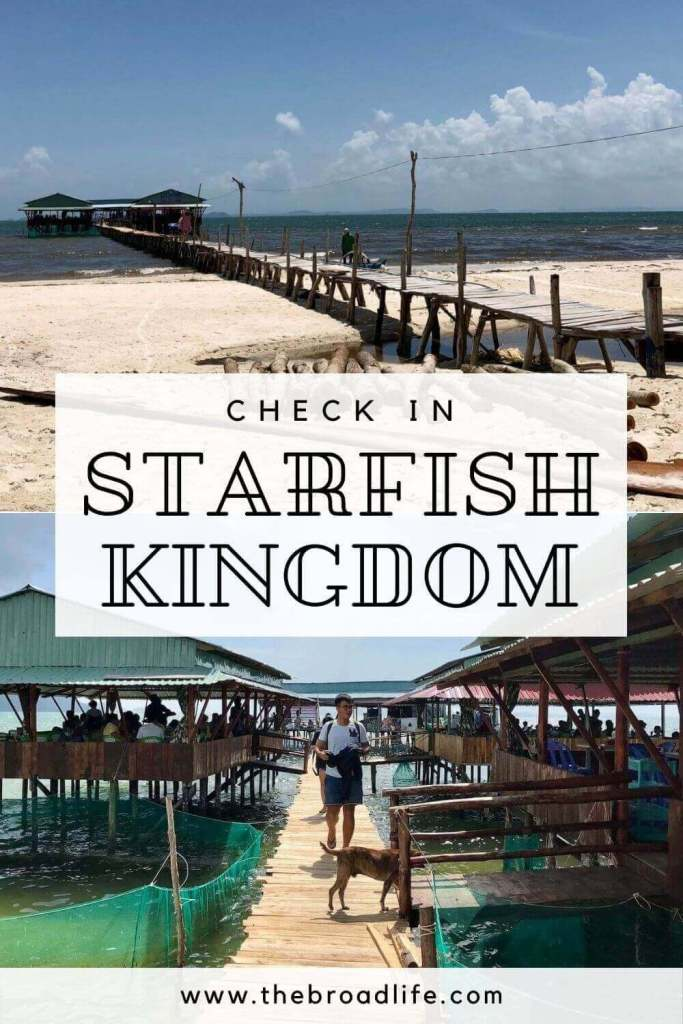 check in starfish kingdom rach vem fishing village - the broad life's pinterest board