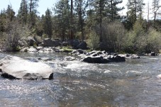 Deschutes river running through Shevlin park. April 30 photo by Kayla Scott.