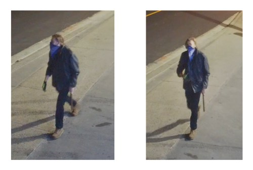 Police searching for suspect in downtown Beaverton vandalism spree
