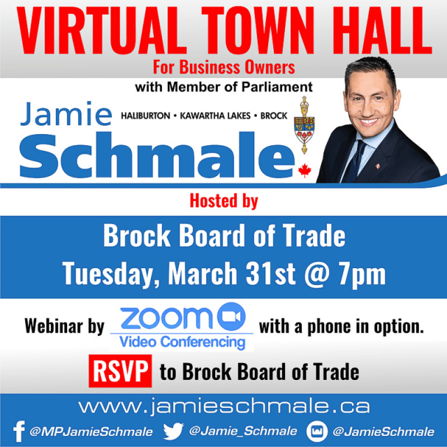 Schmale virtual town hall