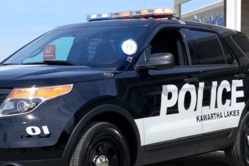 Oakwood men facing weapon, mischief charges