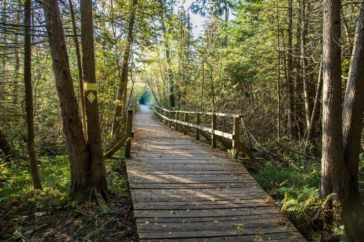 Conservation areas begin re-opening in the Kawartha watershed