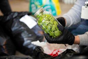drug bust york 3