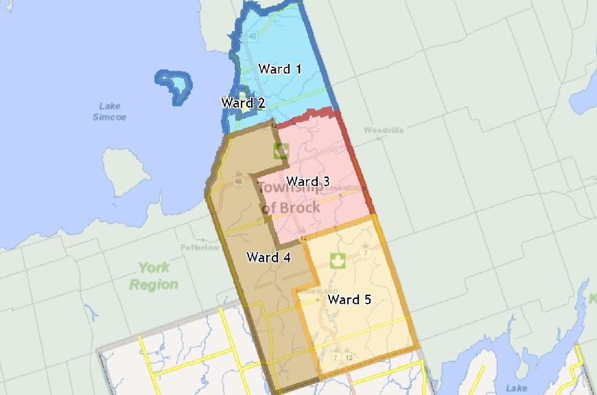 Township hosting virtual meetings on ward boundary review