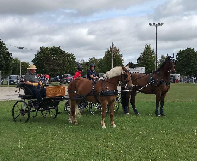 Sunderland Fall Fair's outdoor show draws a crowd