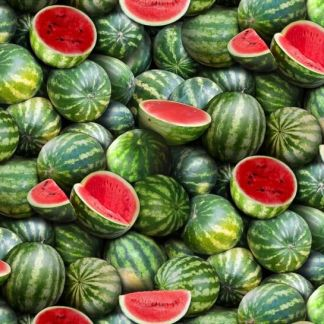 Watermelon 563-green