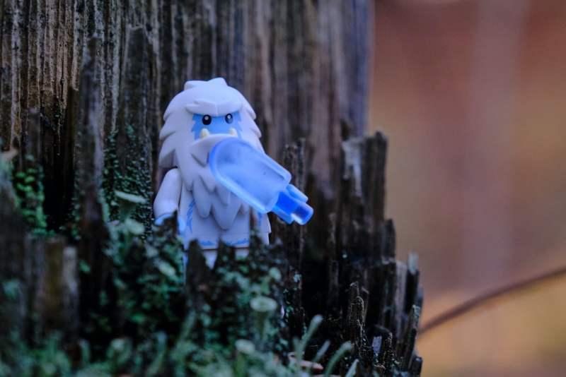 white angel figurine on tree branch