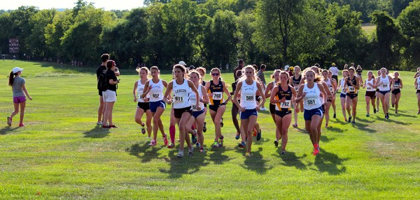 Lehigh cross country prepares for race against rival ...