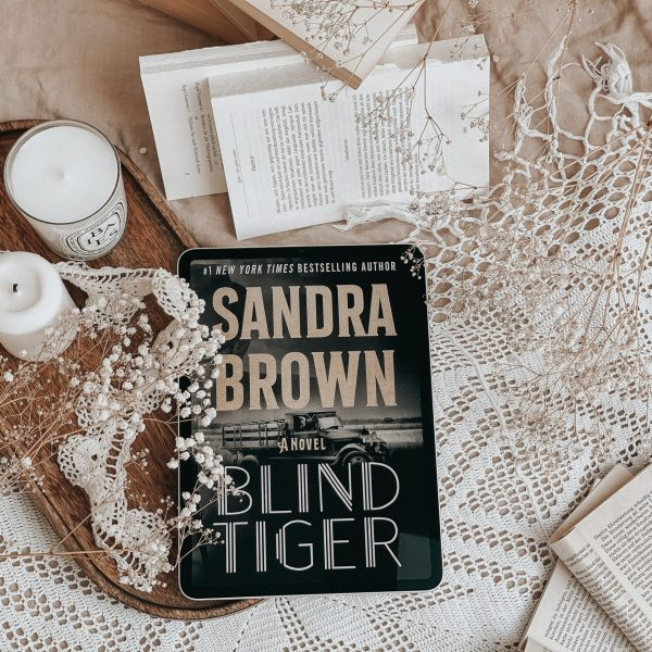 Blind Tiger by Sandra Brown | BOOK REVIEW