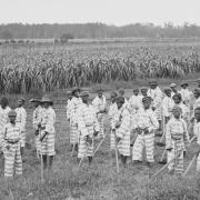 Convict Leasing: Worse than Slavery