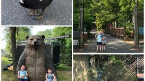 Cohanzick Zoo and Bridgeton Splash Park