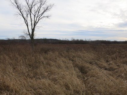 Looking at the Kettle Moraine