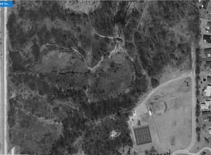 By 1990 the brush is getting thick but you can still see the trails in the center-right and even a little bridge over the canal.