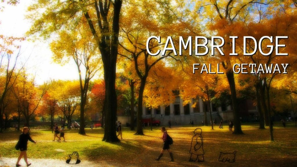 Why Cambridge is The Perfect City for a Fall Getaway
