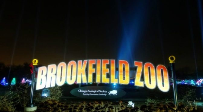 Bright Lights. Magical Nights | Brookfield Zoo Holiday Magic