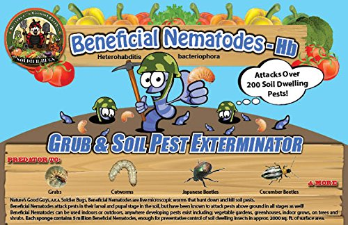 Bug Sales 25 Million Live Beneficial Nematodes Hb