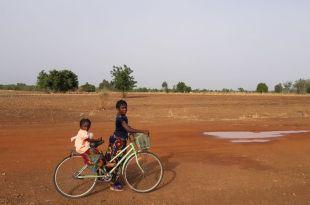 Les délices à 6 pattes du Burkina Faso