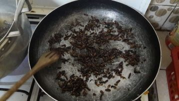 winged termites fried in a pan