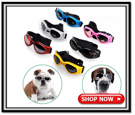 dog sunglasses UV protector