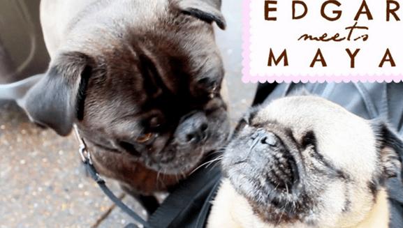 Edgar_meets_Mya