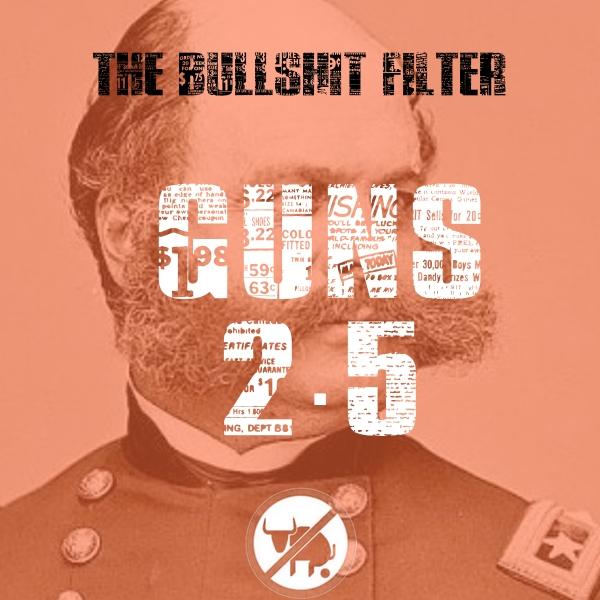 Gun Control 2.5