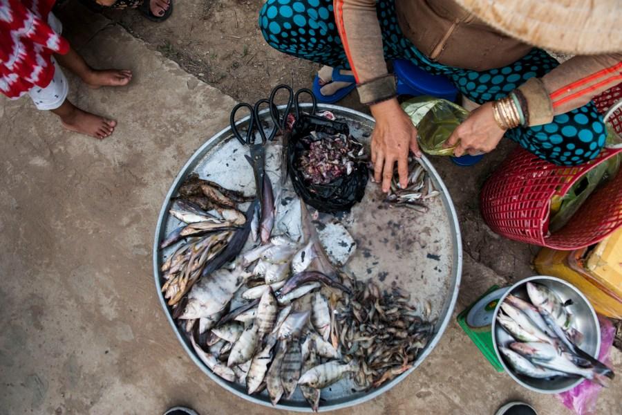 Women of the Mekong