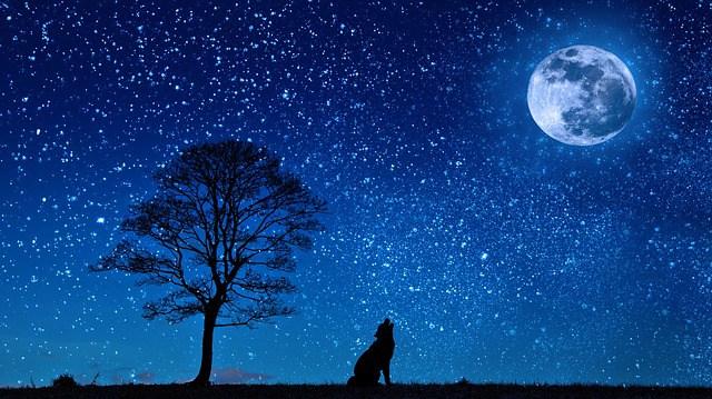 4 Ways to use Moon Energy