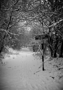 Beck Hole signpost in snow - Mike Nicholas