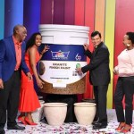 Crown Paints Launches New Product That Imitates Stone