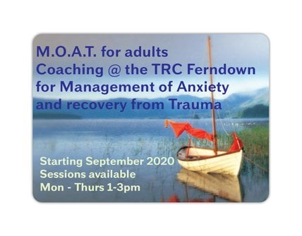 Management of Anxiety and Trauma Recovery 1-2-1 Coaching