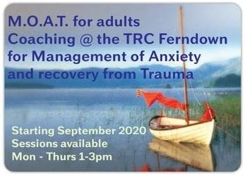 Management of Anxiety and Trauma Recovery 1-2-1 Coaching Courses
