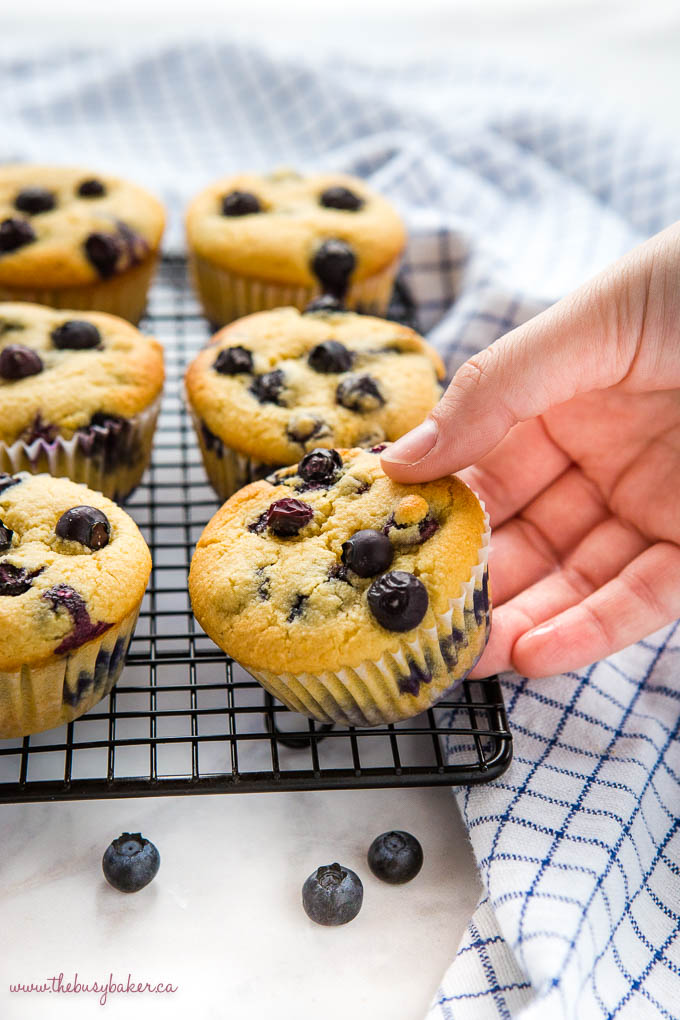 hand reaching for low carb blueberry muffin