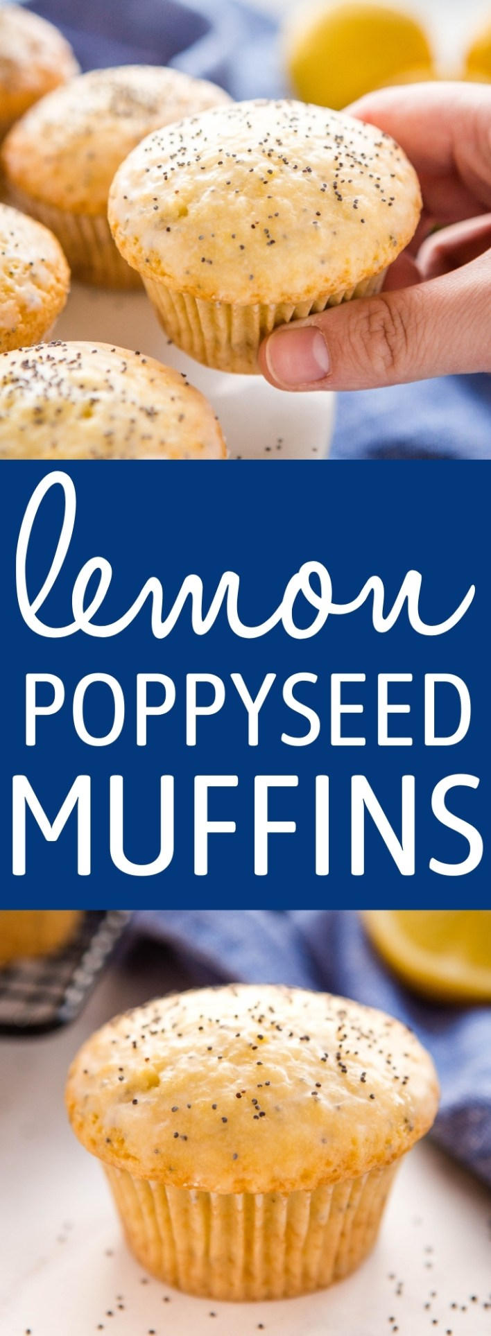 These Lemon Poppy Seed Muffins are the perfect sweet treat for breakfast, brunch or snack. Make this recipe for moist, tender muffins packed with fresh lemon and poppy seeds! Recipe from thebusybaker.ca! #recipe #lemon #poppyseed #muffins #cake #baking #fruit #citrus #homemade #muffinrecipe via @busybakerblog