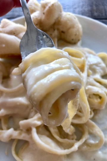 Fast and Easy Creamy Alfredo Sauce on pasta being eaten with a fork