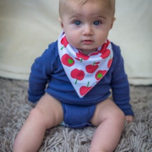 PP - apple bib