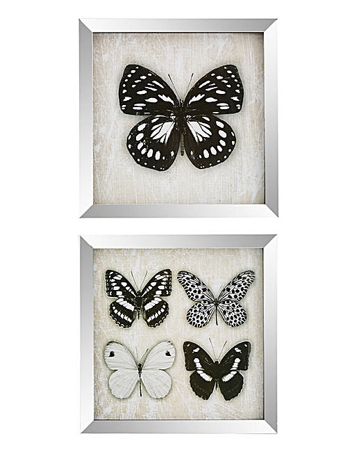 JDWilliams-Butterfly-Prints
