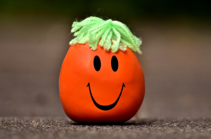 Red stress ball with green wool hair and a smiley face