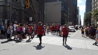 parade ddd