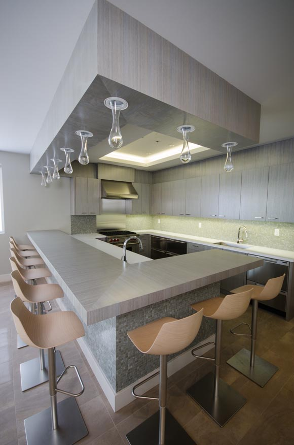 contemporary_kitchen-2